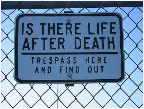 awesome sign 37